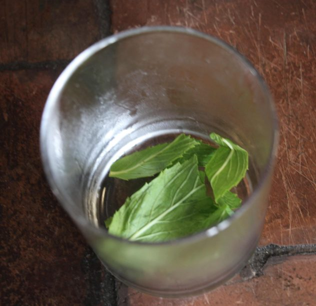 Fresh mint leaves inside a chilled glass.